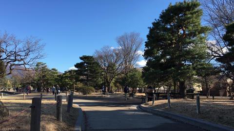 松本城 Footage