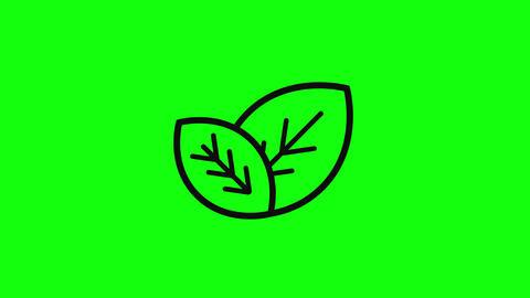 eco leaf leaves leaf vegan leaf eco icon logo leaves icon logo flat vegan icon logo flat eco nature Animation