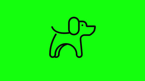 Transparent pet free animal dog free animal puppy animal pet icon dog icon puppy icon pet flat dog Animation