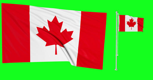 Two flags canadian flagpole canadian Canada canadian flagpole waving waving Canada waving flags Animation