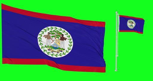 Two flags waving Belize waving greek waving flagpole national belizean national greek national flag Animation