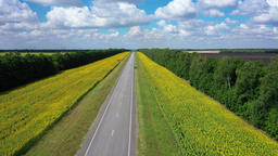 aerial video, flying over a flat and straight highway going beyond the horizon Live Action