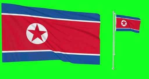 North Korea green screen two flags green screen waving green screen North Korea korean flagpole Animation