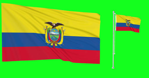 Two flags waving Ecuador waving ecuadorean waving flagpole national Ecuador national ecuadorean Animation