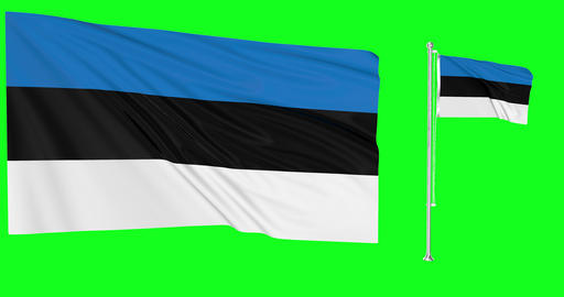 Two flags waving Estonia waving estonian waving flagpole national Estonia national estonian national Animation