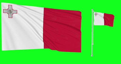 Two flags waving Malta waving greek waving flagpole national maltese national greek national flag Animation