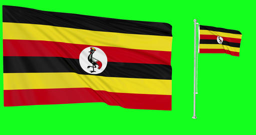 Uganda waving ugandan flag waving two flags waving Uganda flagpole green screen ugandan green screen Animation