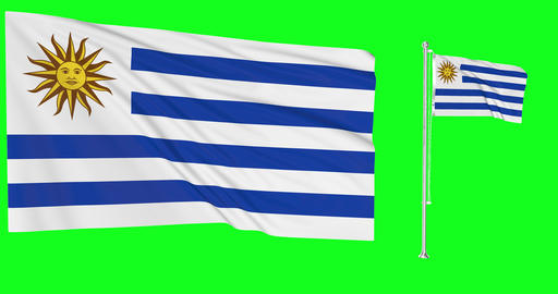 Uruguay waving uruguayan waving two flags waving Uruguay green screen uruguayan green screen flag Animation