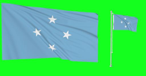 Micronesia waving micronesian waving two flags waving Micronesia green screen micronesian flag green Animation