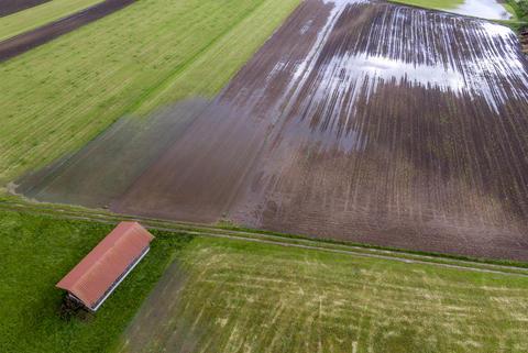 Flooded Field after Rain Fotografía