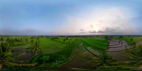 Rice terraces and agricultural land in indonesia vr360 VR 360° Video