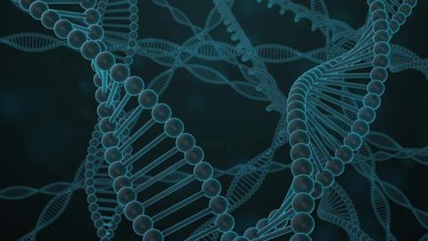 DNA image cg 002 Animation