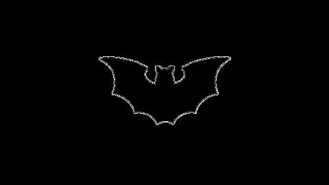 飛ぶ蝙蝠(顔なし)のアニメーション ループ CG動画