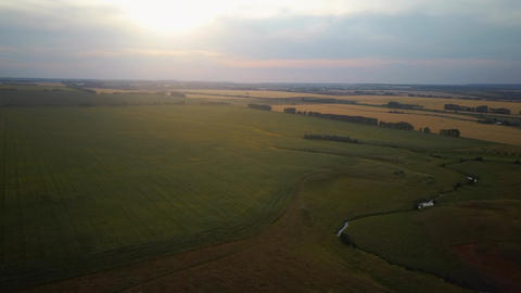 Aerial video flying over field during sunset Live Action