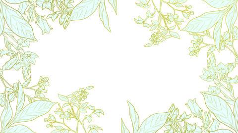 Botanical 0206 loop 097-192f plants frame mint 애니메이션
