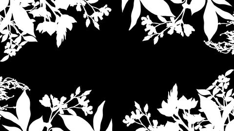 Botanical 0207 loop 097-192f plants frame mask Animation