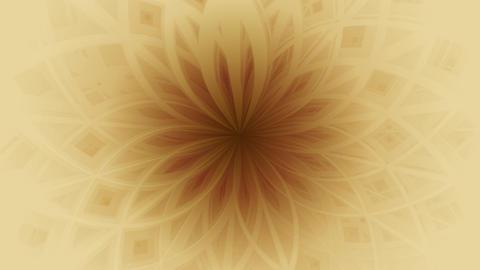 Flower image background 003 CG動画