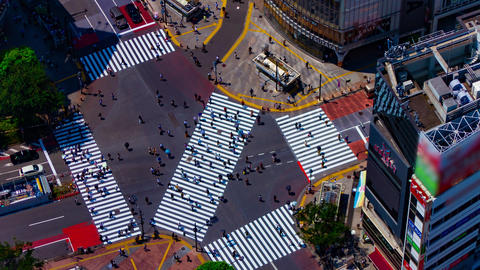 A timelapse of Shibuya crossing in Tokyo high angle long shot zoom Live Action
