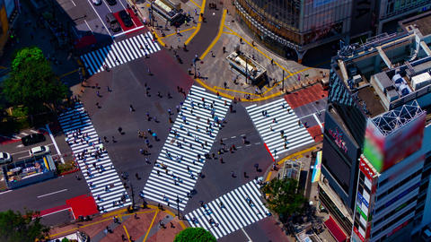 A timelapse of Shibuya crossing in Tokyo high angle long shot Live Action