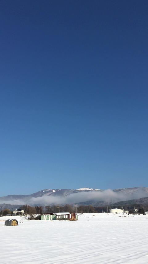 鉢伏山 ビデオ