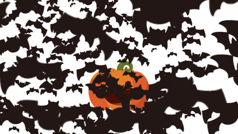 Halloween opening animation Animation