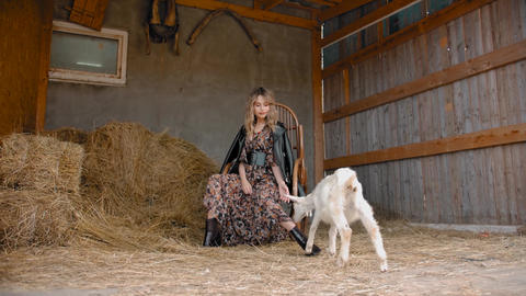 Stylish woman and goat in barn Live Action