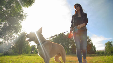 Attractive lady in jeans leads her doggy for a walk. Shooting in slow motion Live Action