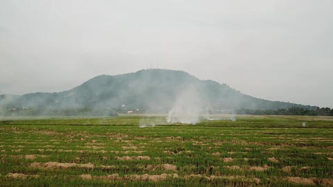Global warning open fire at open rice field Live Action