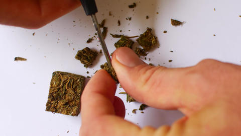 The hemp is cut with scissors. Preparing cannabis for consumption Live Action