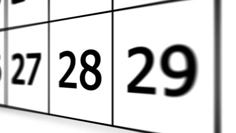 Thirty-first day of the calendar Animation