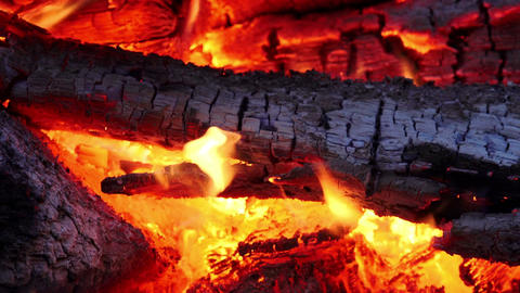 fireplace: wood in fire inside a fireplace Footage