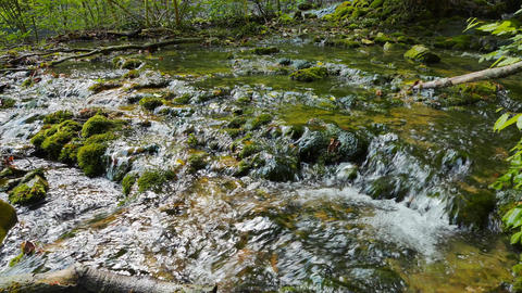 River in the moss. Sary-Uzen. Crimea Footage
