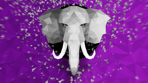 Polygonal Elephant background. Animal head. Low polygon loop animation. Geometric wildlife. Animation