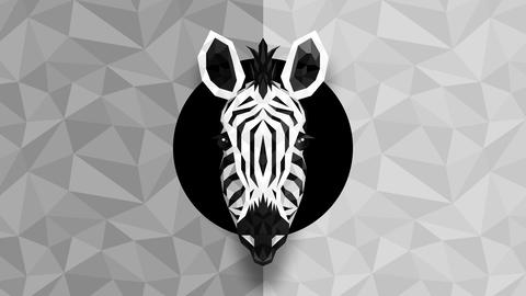 Polygonal Zebra background. Animal head. Low polygon loop animation. Geometric wildlife. Polygonal Animation