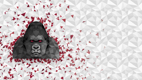 Polygonal Gorilla background. Animal head. Low polygon loop animation. Geometric wildlife. Polygonal Animation