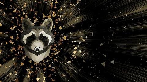 Polygonal Raccoon background. Animal head. Low polygon loop animation. Geometric wildlife. Polygonal Animation