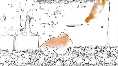 金魚アニメーション CG動画