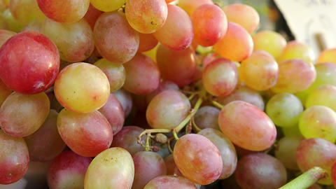 closeup footage over grapes: change of focus Footage