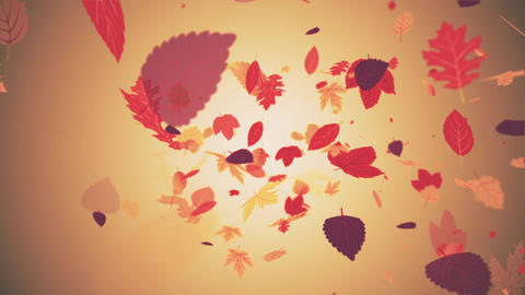 Beautiful Autumn Leaves Motion Background Videos animados