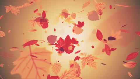 Beautiful Autumn Leaves Gently Falling Background Videos animados