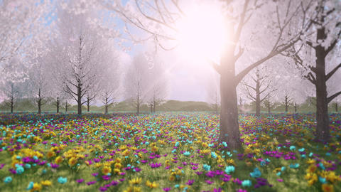 Colorful Flowers & Peer Trees Field Loop - Nature Landscape Background Animation
