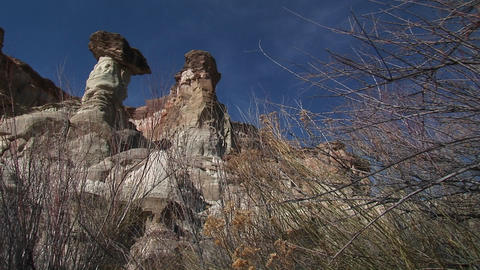 Long-shot of desert rock formations standing beyond bare tree branches Footage