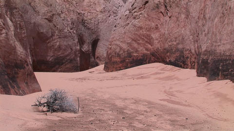 Medium-shot of a sandy, canyon floor at the base of... Stock Video Footage
