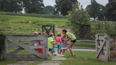 A group of children on a path behind a fence in an Stock Video Footage