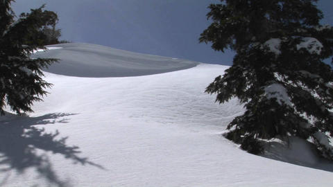 Medium shot of a snowboarder passing and leaving powder... Stock Video Footage