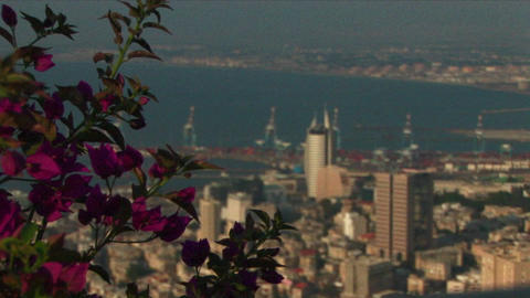 Long shot of Haifa, Israel with the port in the distance Stock Video Footage