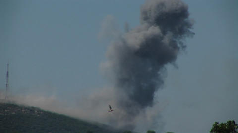 Birds fly from trees as a plume of smoke rises from a... Stock Video Footage