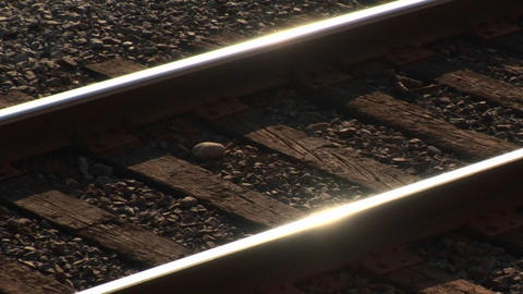 Railroad tracks shine at day Footage