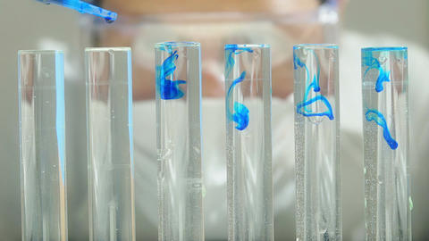 scientist working into a laboratory: researcher in biochemical lab Footage