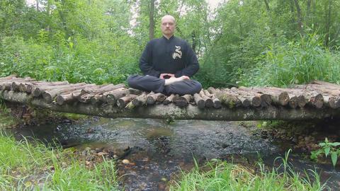 Collection Yoga Wushu Qigong Tai Chi.